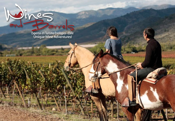 Wine Tours Chile